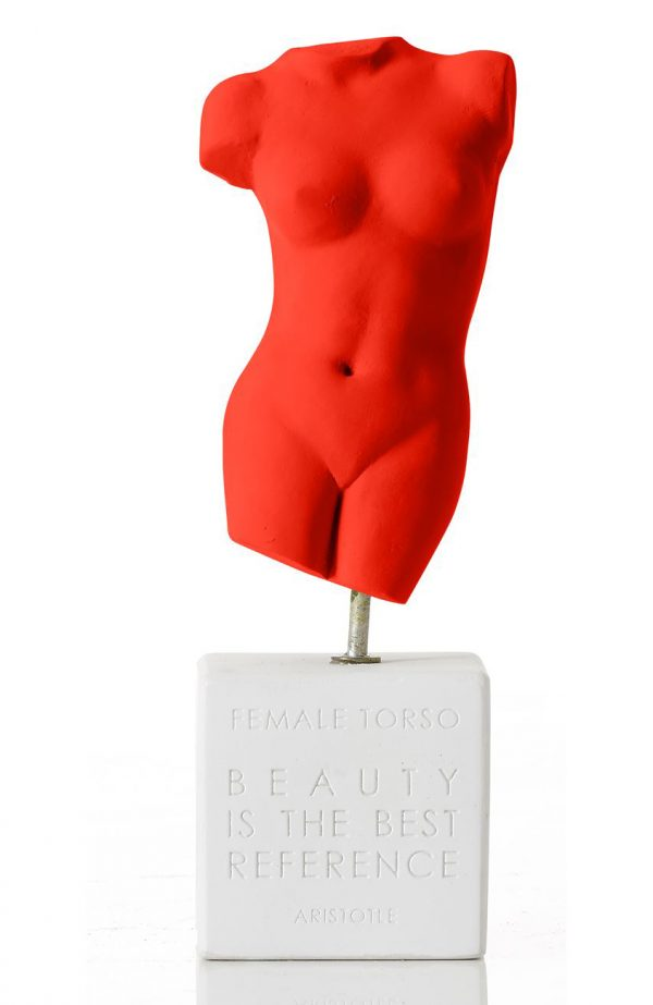 sophia-female-torso-medium