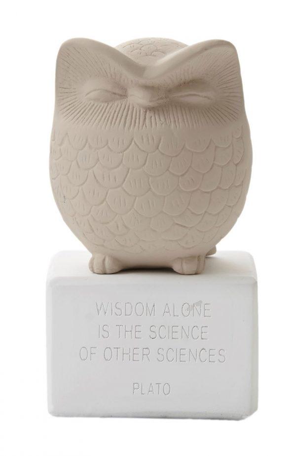 sophia-owl-medium